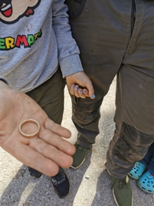 Ring im Garten verloren